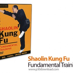 1402310168_shaolin-kung-fu-fundamental-training