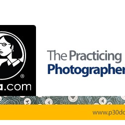 1390206590_lynda-the-practicing-photographer
