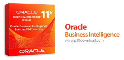 1413792837_oracle-business-intelligence